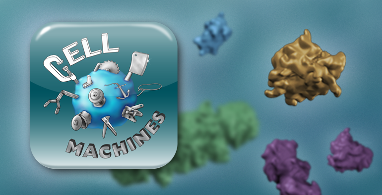 Sample 2: Cell Machines is a 3D puzzle game I designed in 2012 for my BMC Master's Research Project to teach university biology students about molecular representation and protein-protein interactions.